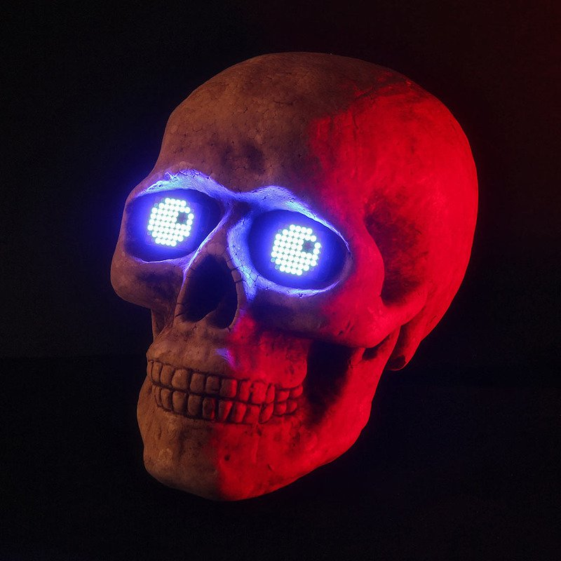 led_matrix_skull2.jpg
