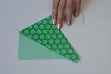 braincrafts_frog_origami_pt9.jpg