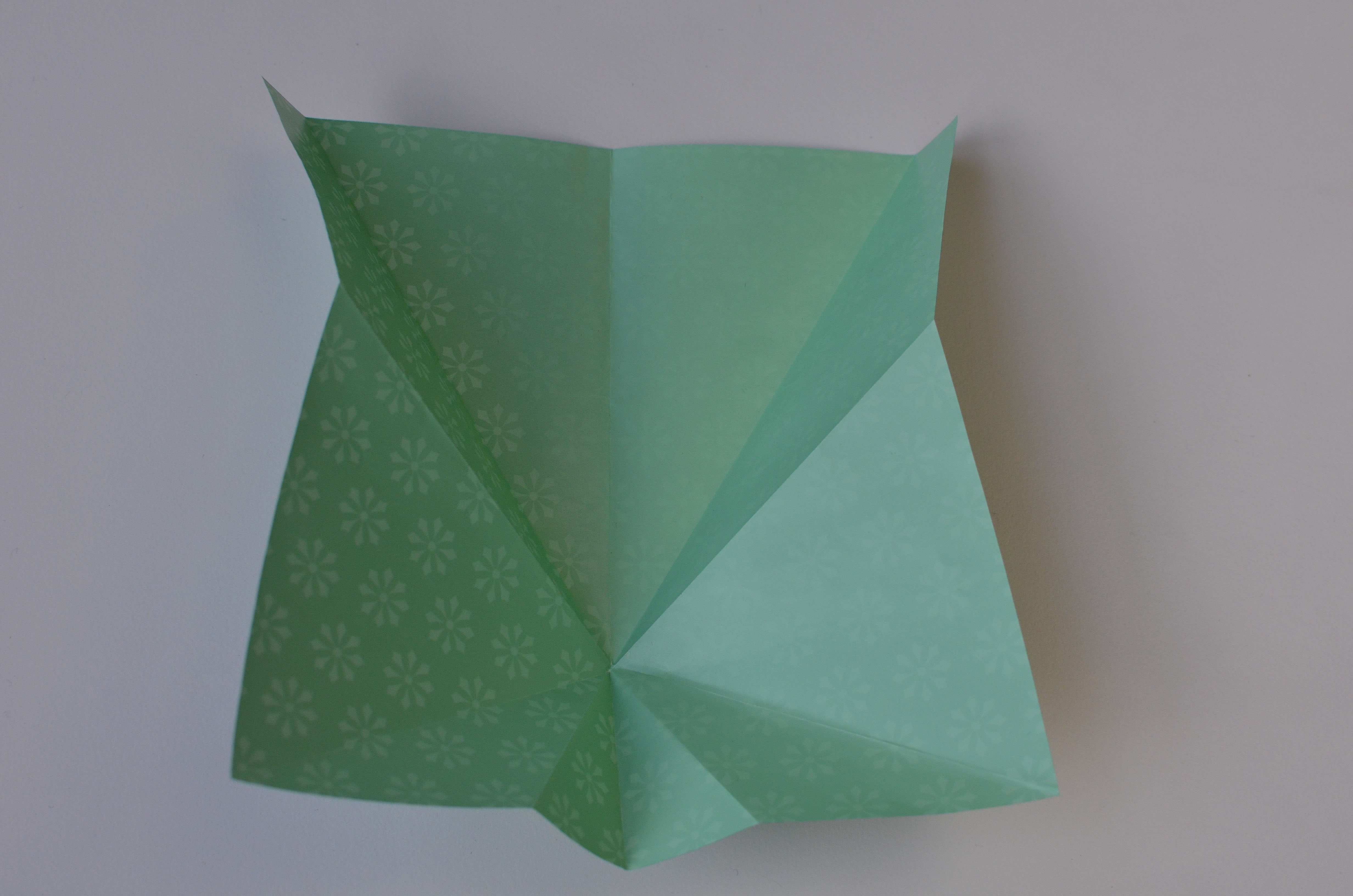braincrafts_frog_origami_pt15.jpg