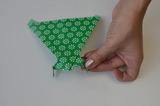 braincrafts_frog_origami_pt44.jpg
