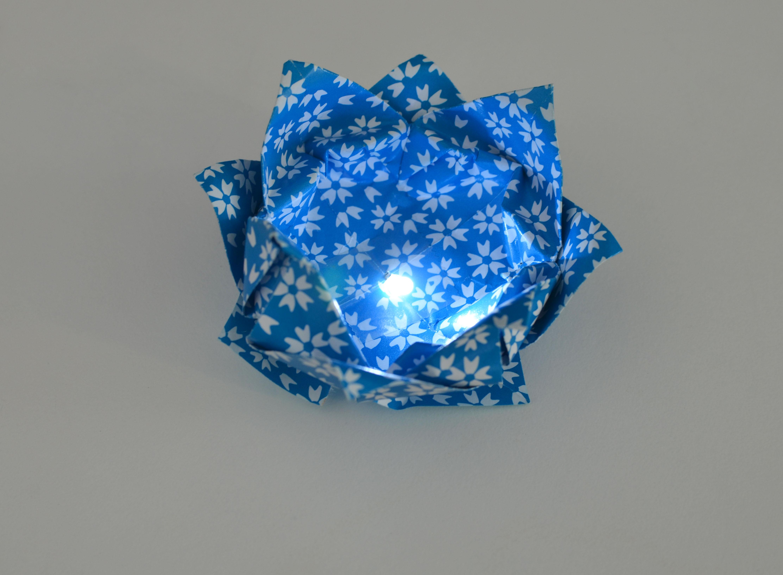 braincrafts_blue_ito_lotus.jpg