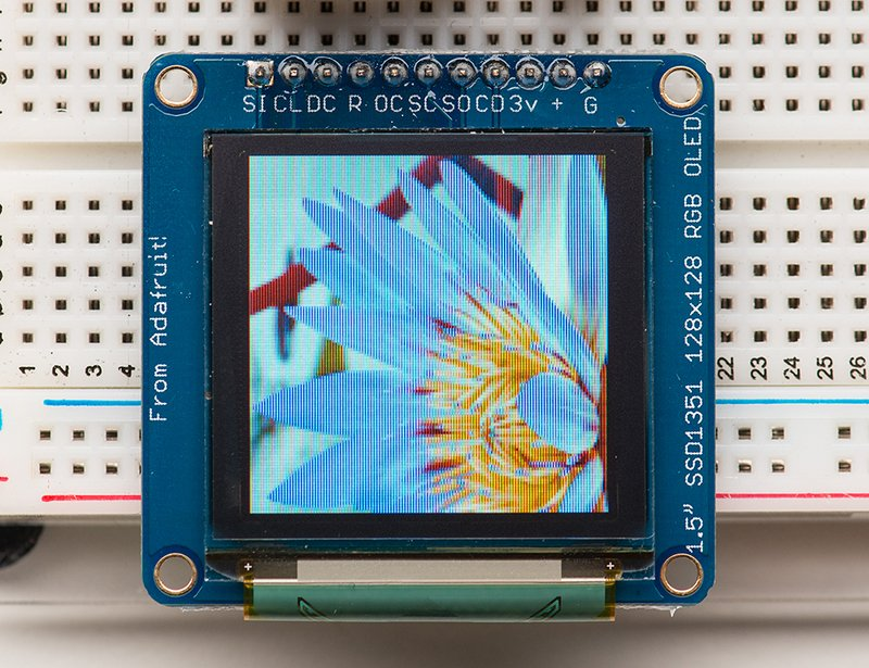 lcds___displays_1431flower_LRG.jpg