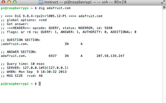 raspberry_pi_dig_adafruit_com.png
