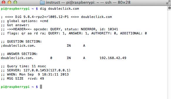 raspberry_pi_dig_doubleclick_com.png