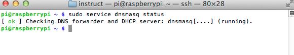 raspberry_pi_dnsmasq_status.png
