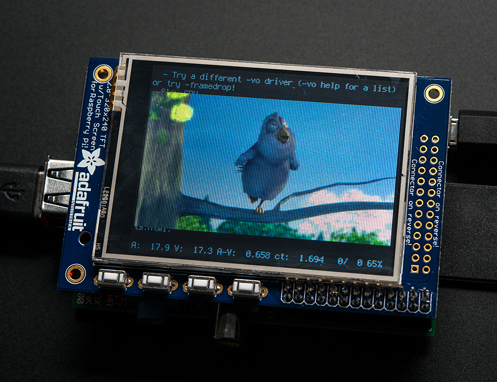 raspberry_pi_1601bird_LRG.jpg