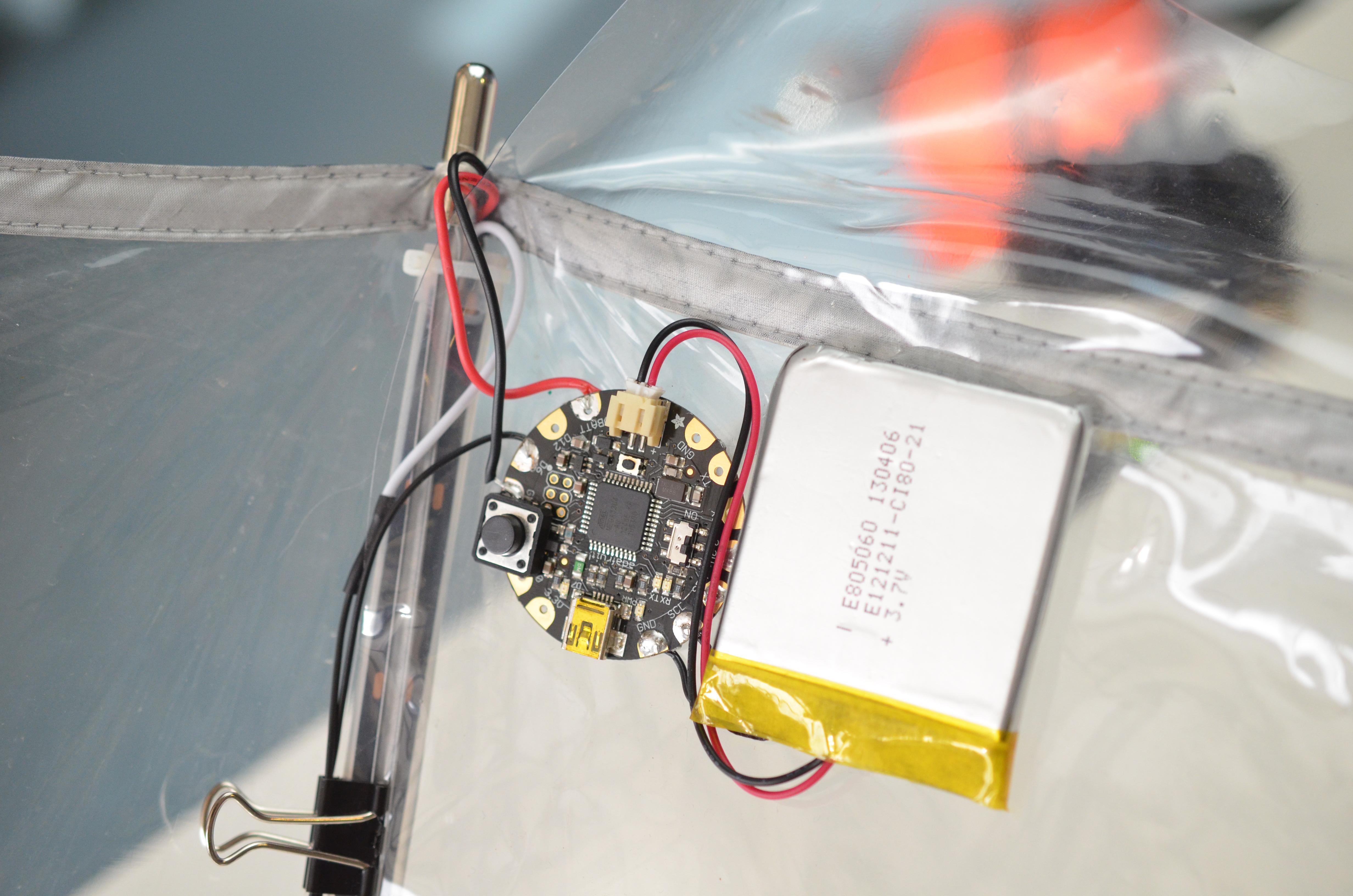 flora-umbrella-circuit-09.jpg