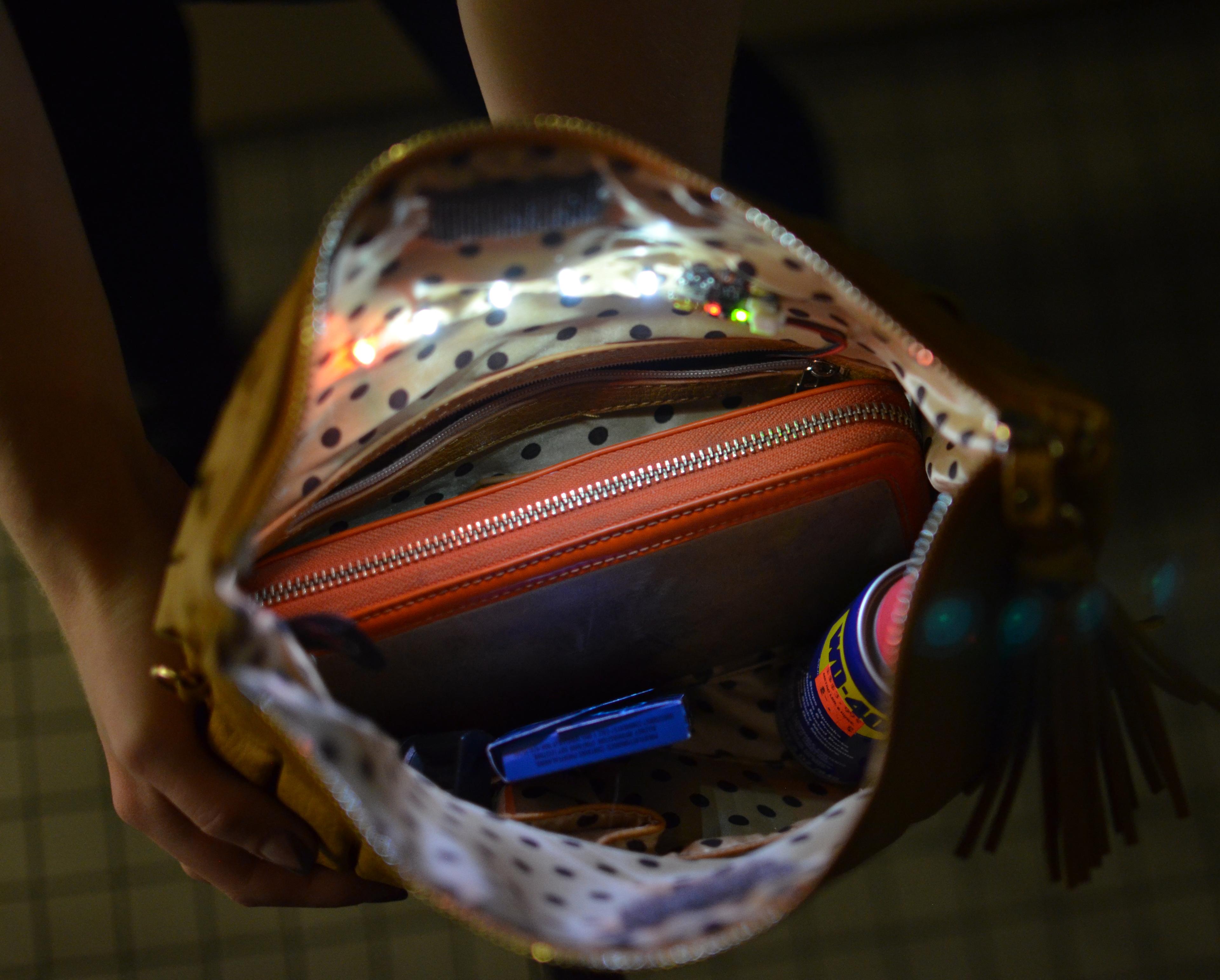 gemma_interior-purse-light-20.jpg