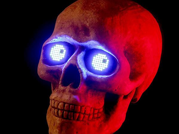 components_skull.jpg