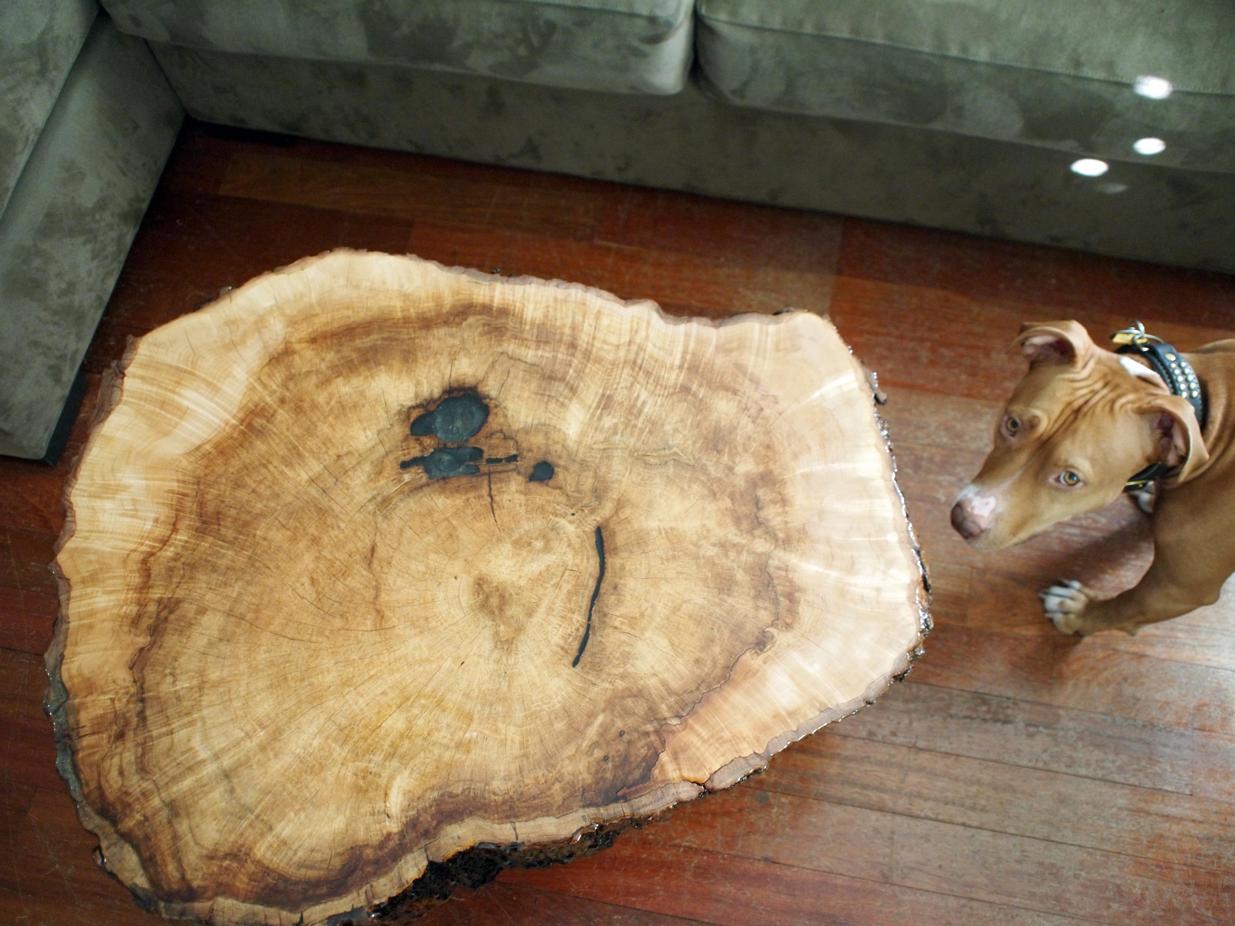 braincrafts_maple-cookie-slab-table-35.jpg
