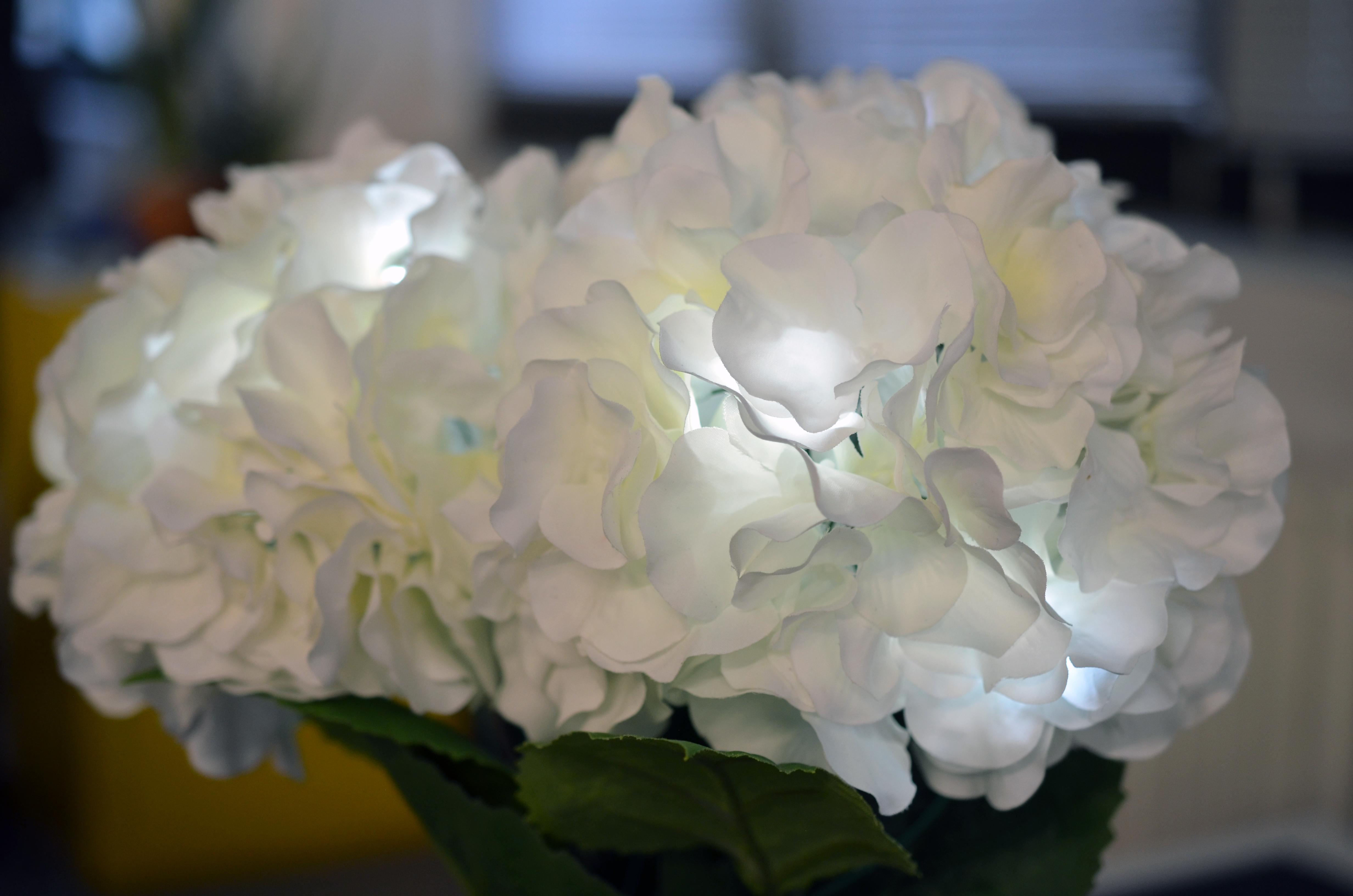 leds_led-flowers-11.jpg