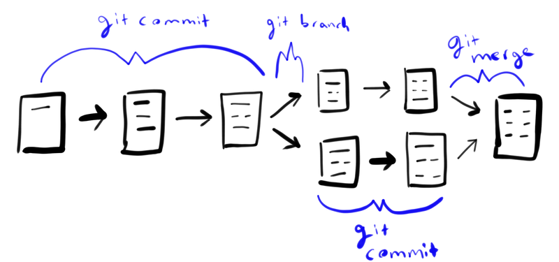 community_support_branching_with_notes.png