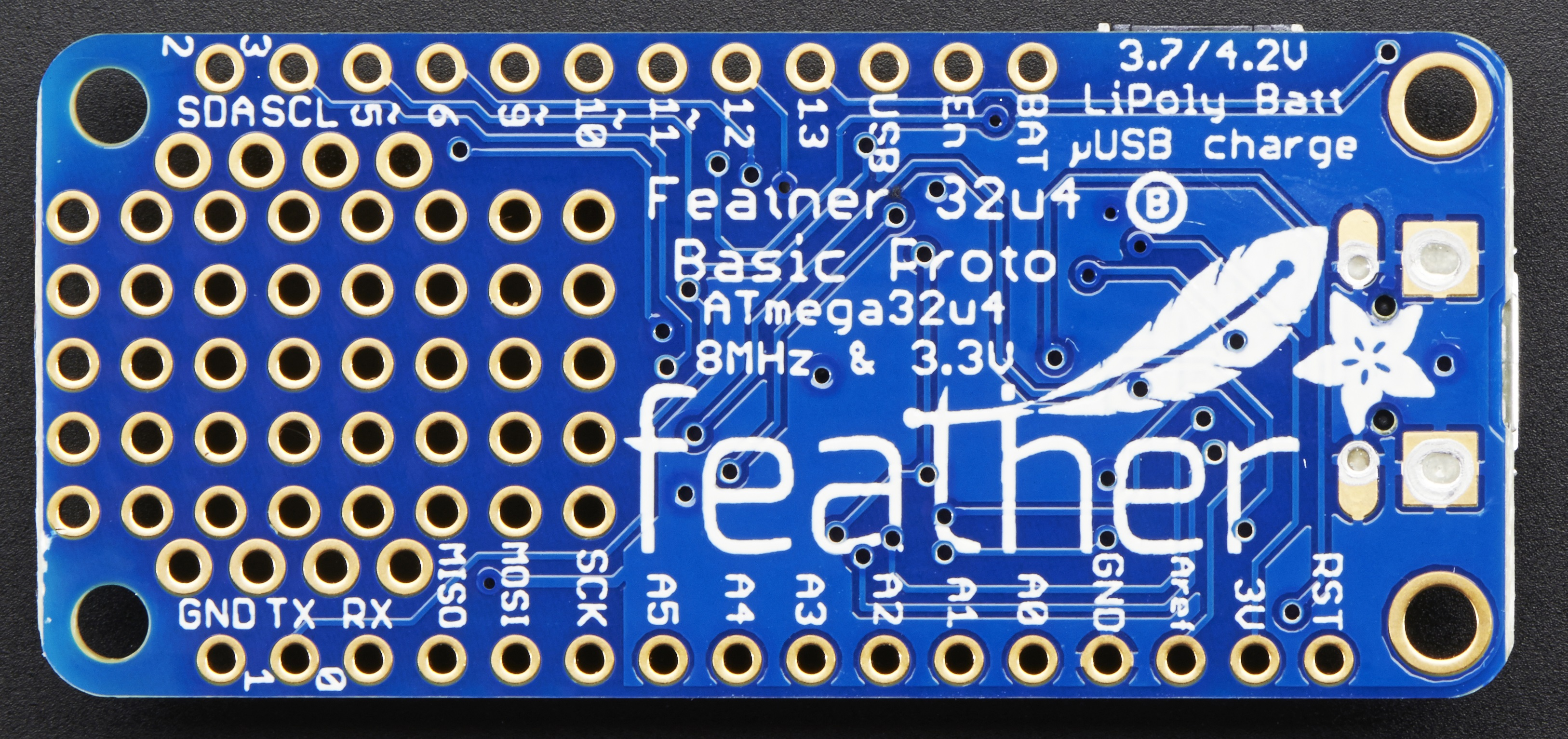 microcomputers_pinoutback.jpg