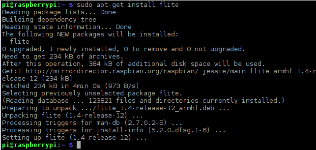 raspberry_pi_flite-install.png