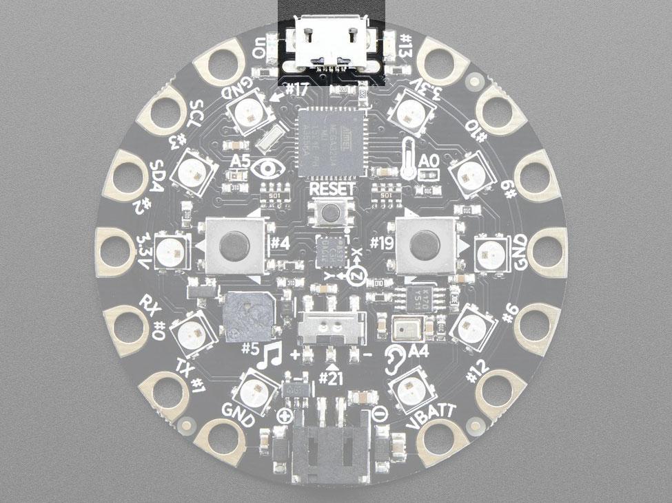 circuit_playground_microsub.jpg