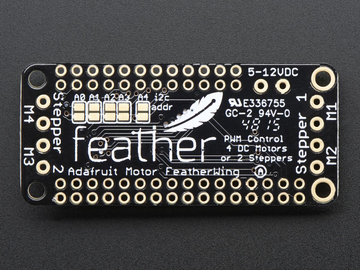 feather_2927-00.jpg