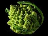 leds_Fractal_Broccoli.jpg