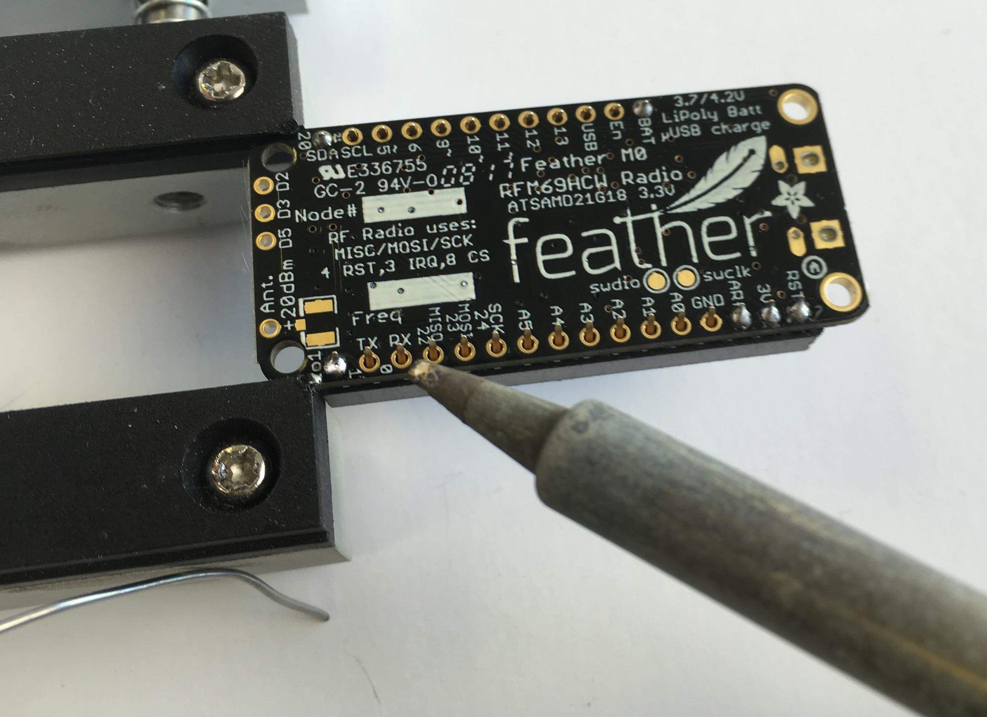 feather_rFX_IMG_0818_2k.jpg