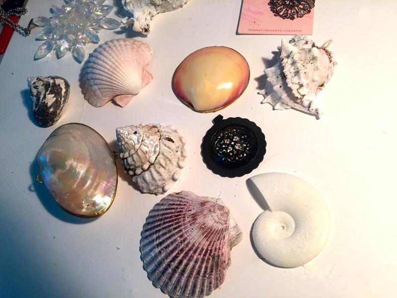 leds_shells.jpg