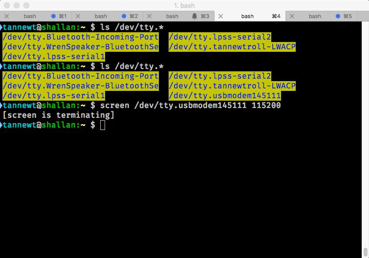 gemma_terminal_after_screen.png