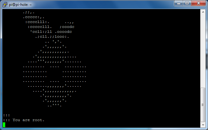 raspberry_pi_root.png