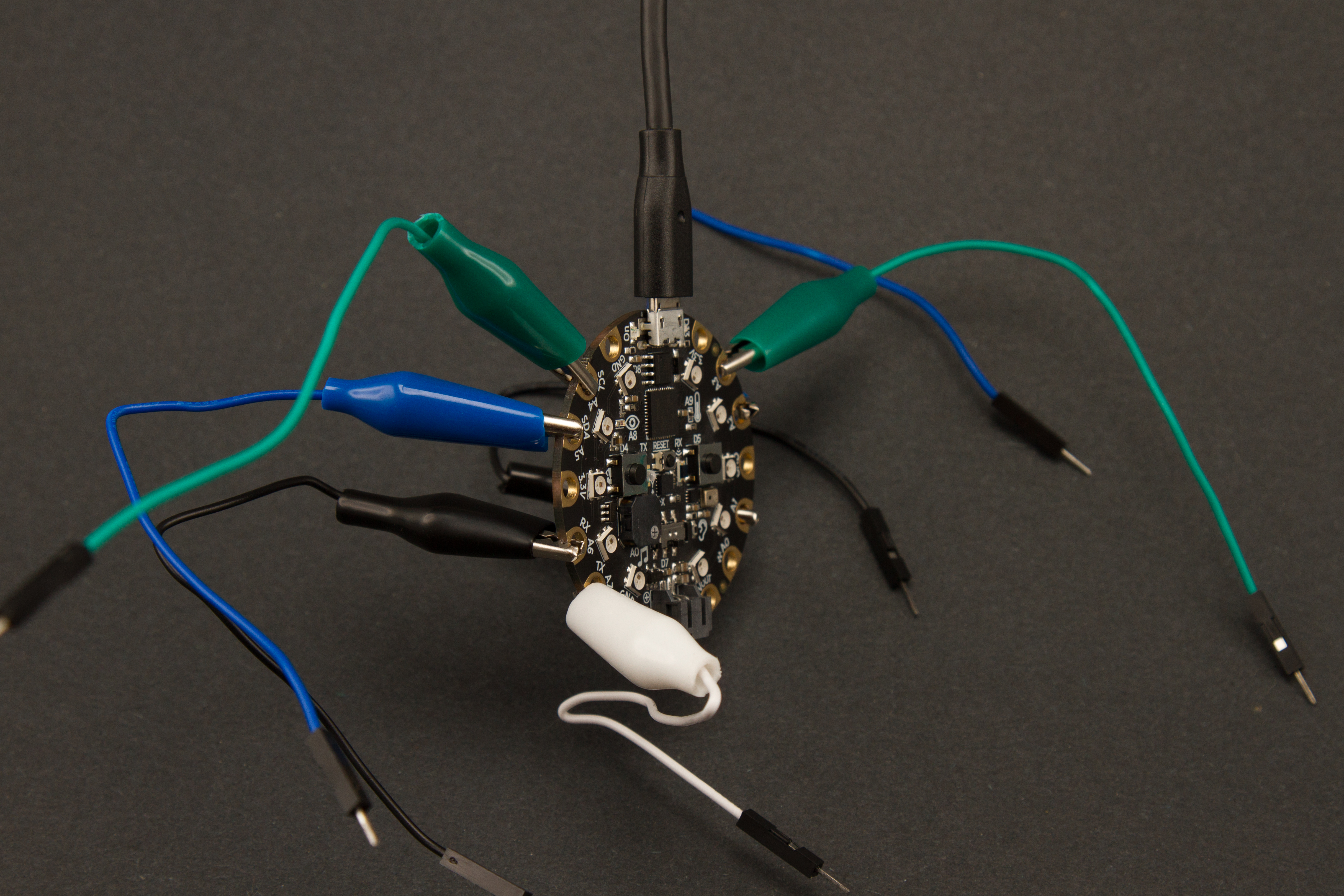 circuitpython_AlligatorConfigSide.jpg