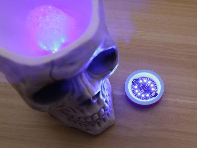 leds_circuitplayground-skull.jpg