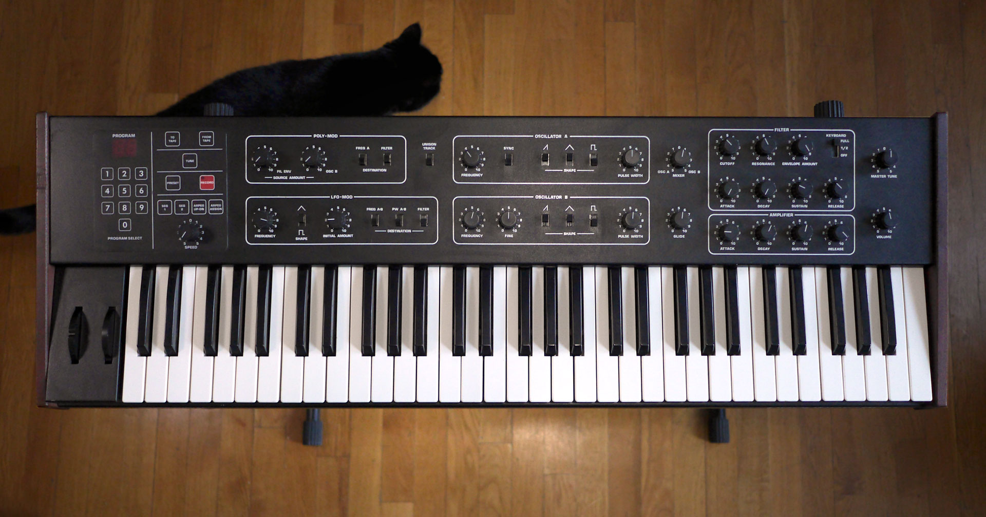 microcontrollers_prophet-600-w-cat-1920.jpg