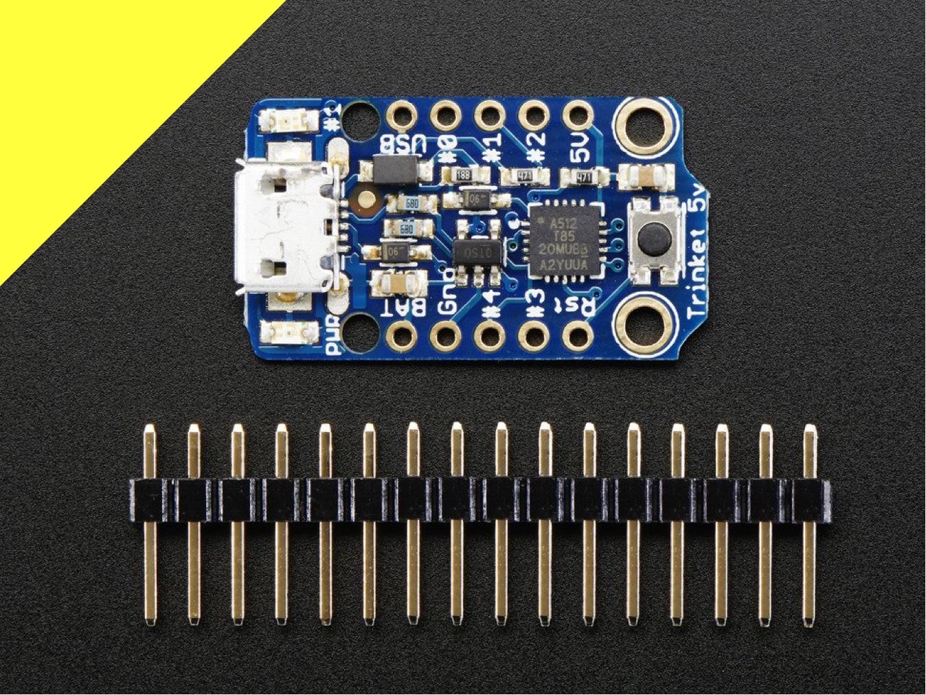 microcontrollers_trinket.jpg