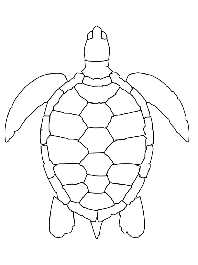 makecode_unconditional-sea-turtle-coloring-pages-page-embroidery-2-pinterest.jpg