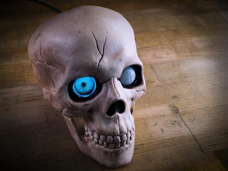 proximity_skullstill01_4x3.jpg