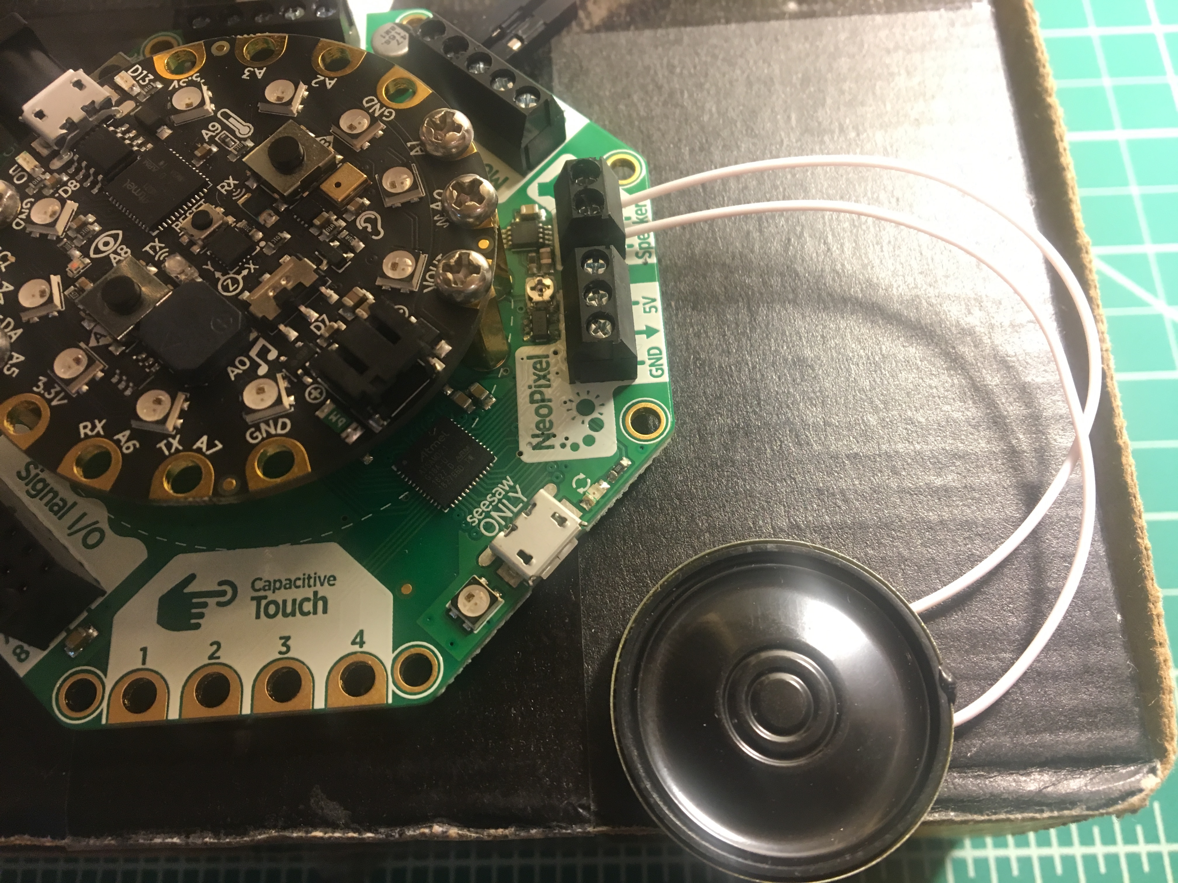 circuitpython_IMG_5931.jpg