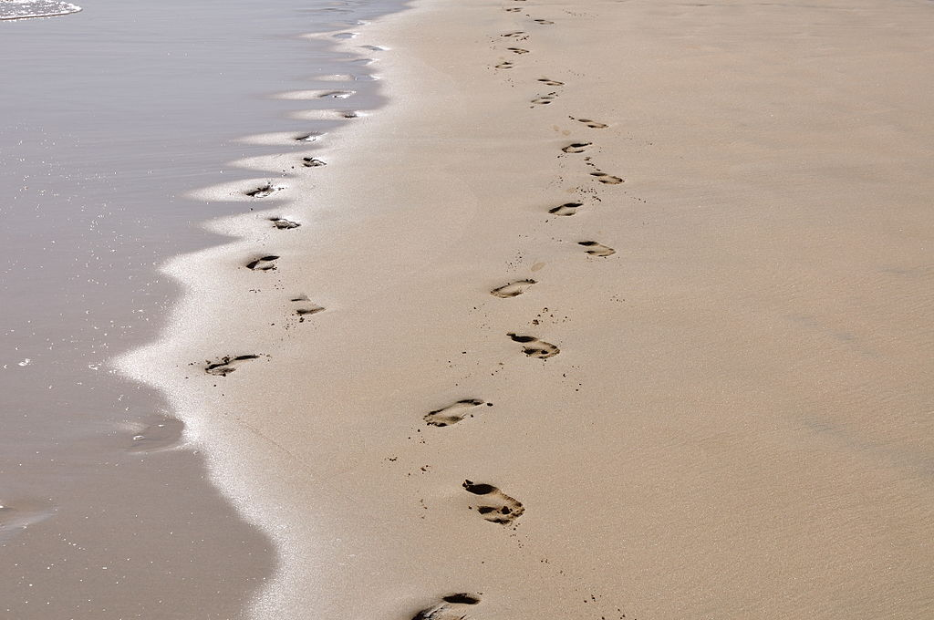 circuitpython_footprints.jpg