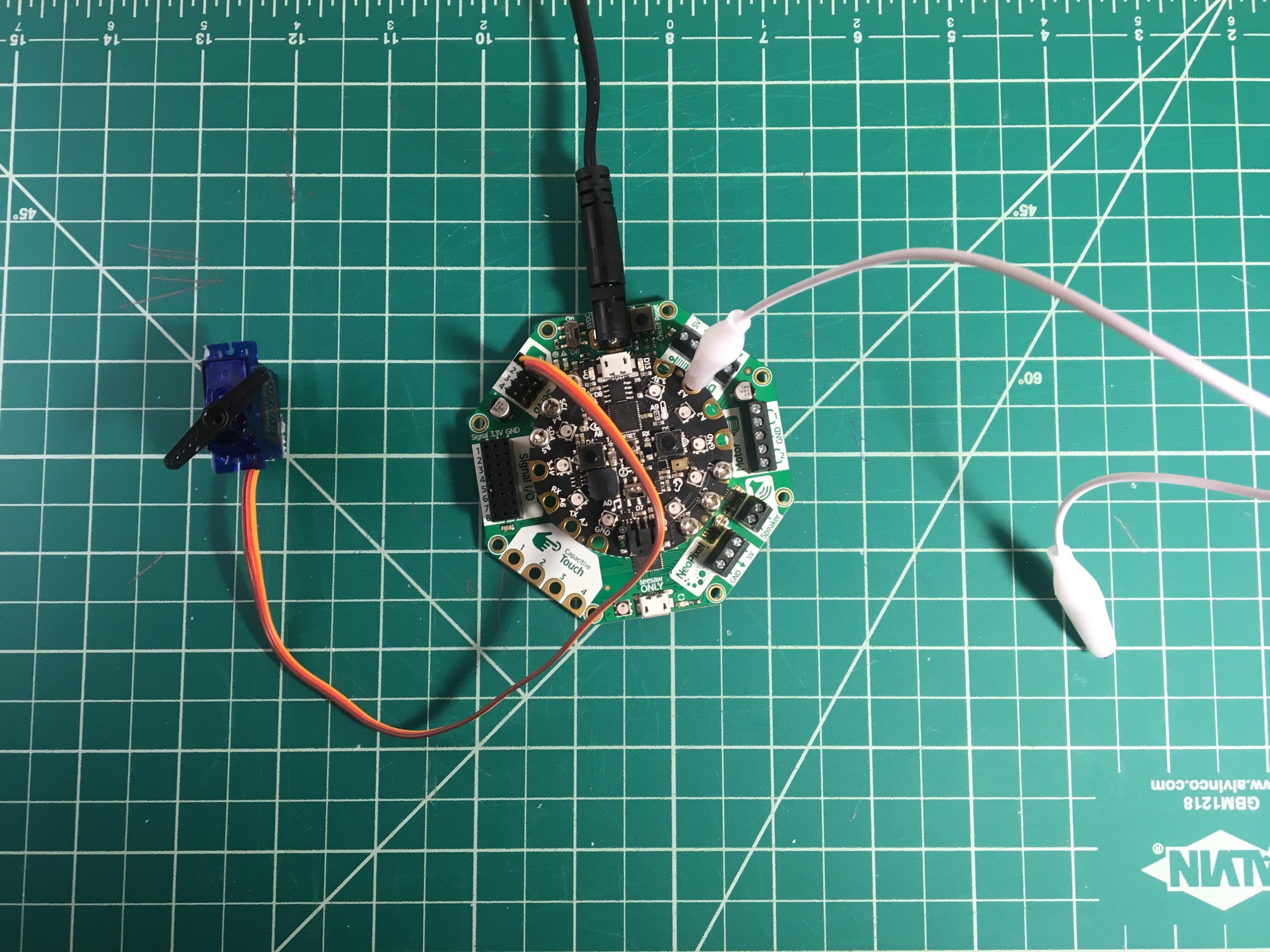 circuit_playground_IMG_6652.jpg