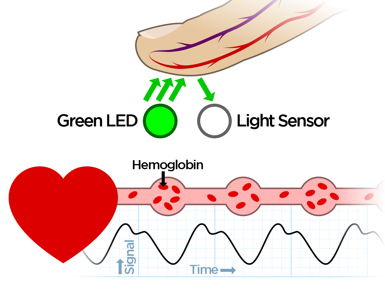 light_pulse-detect.png