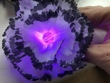adafruit_gemma_22_flowercenter.jpg