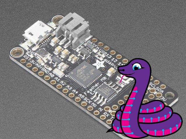 microcontrollers_py.jpg