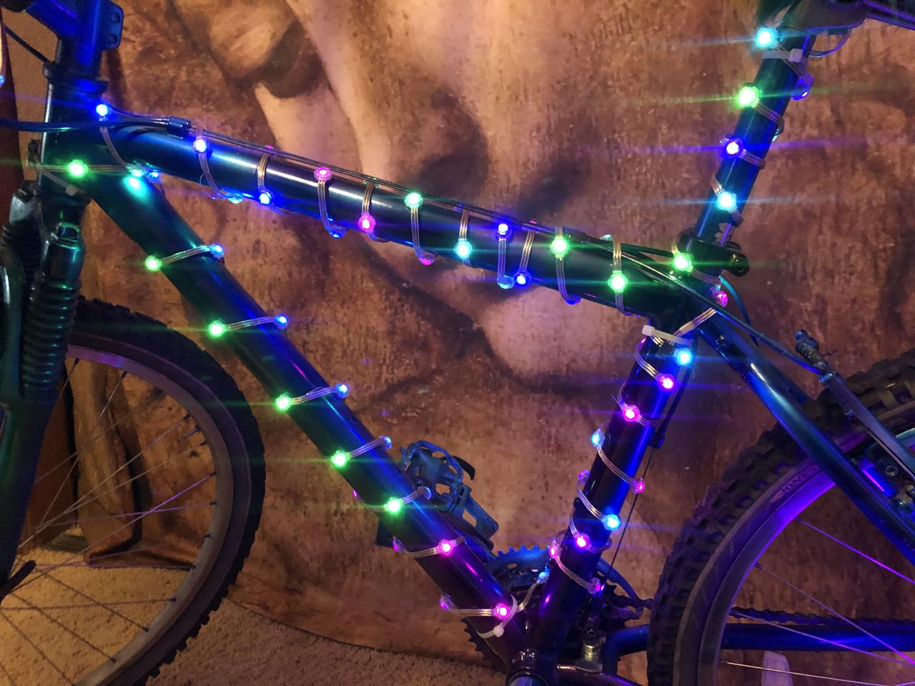 led_strips_frame_13_wrapped.jpg