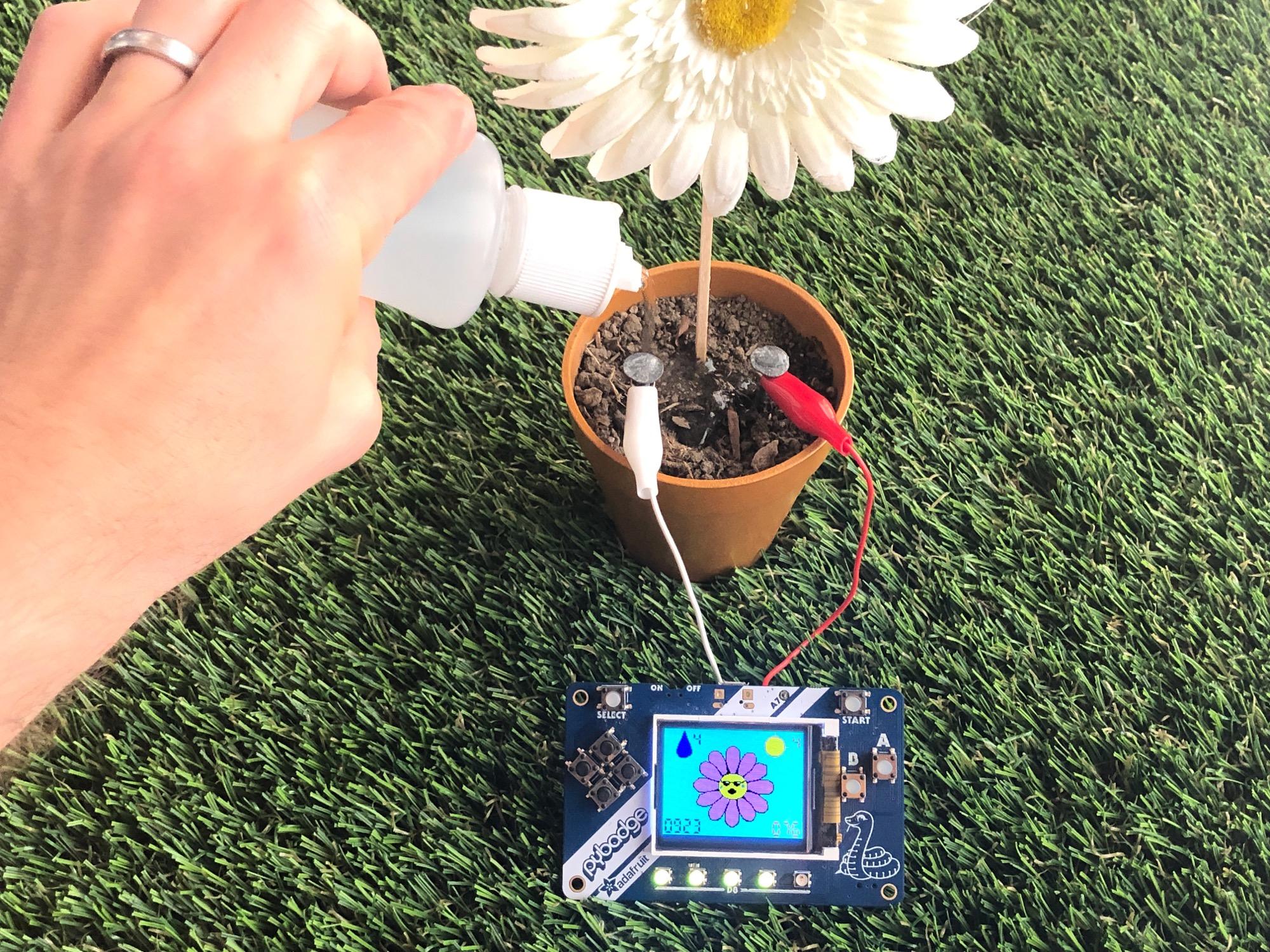 sensors_plantUse02_copy.jpg