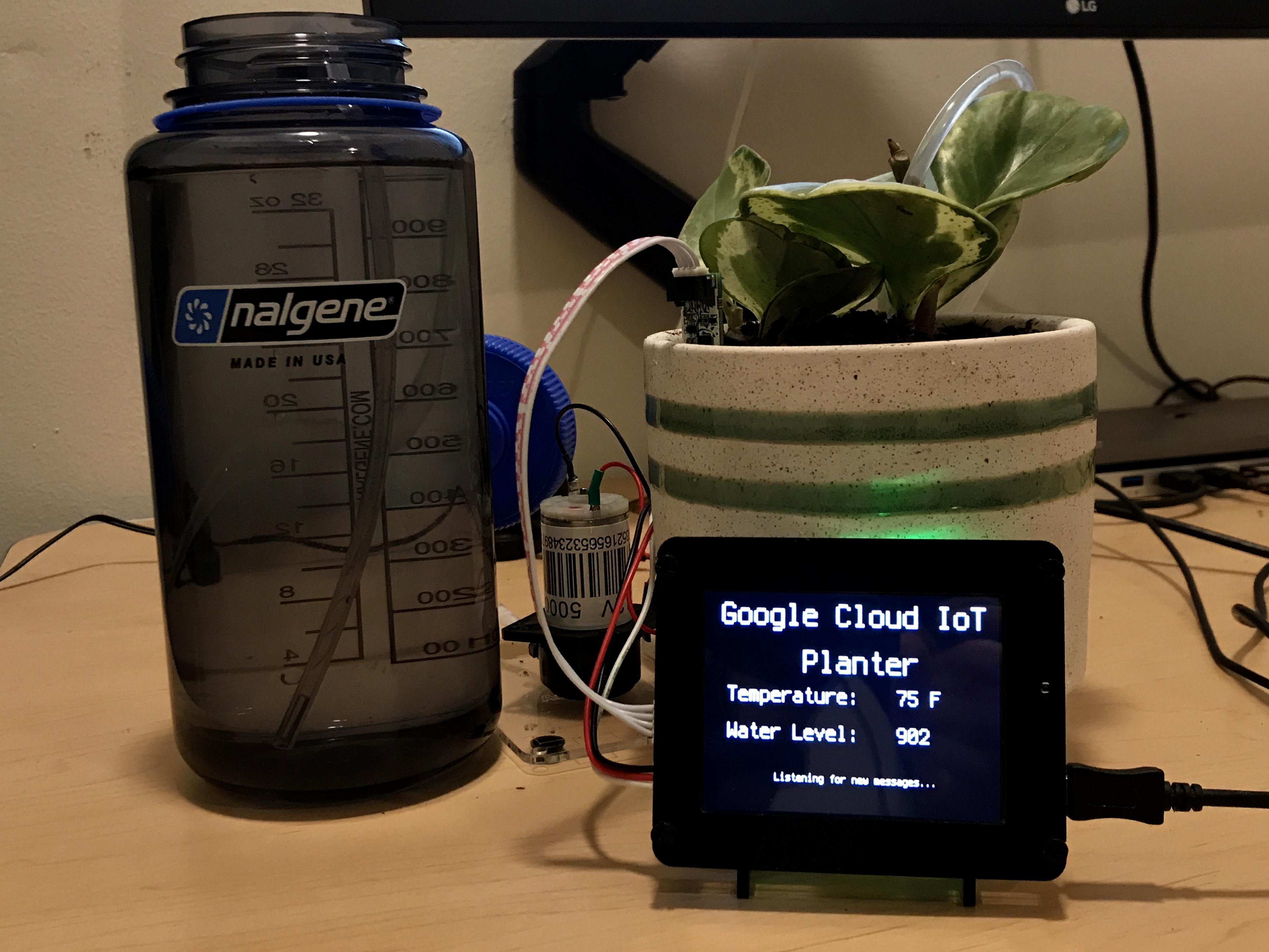 sensors_IMG_7803_2.jpg