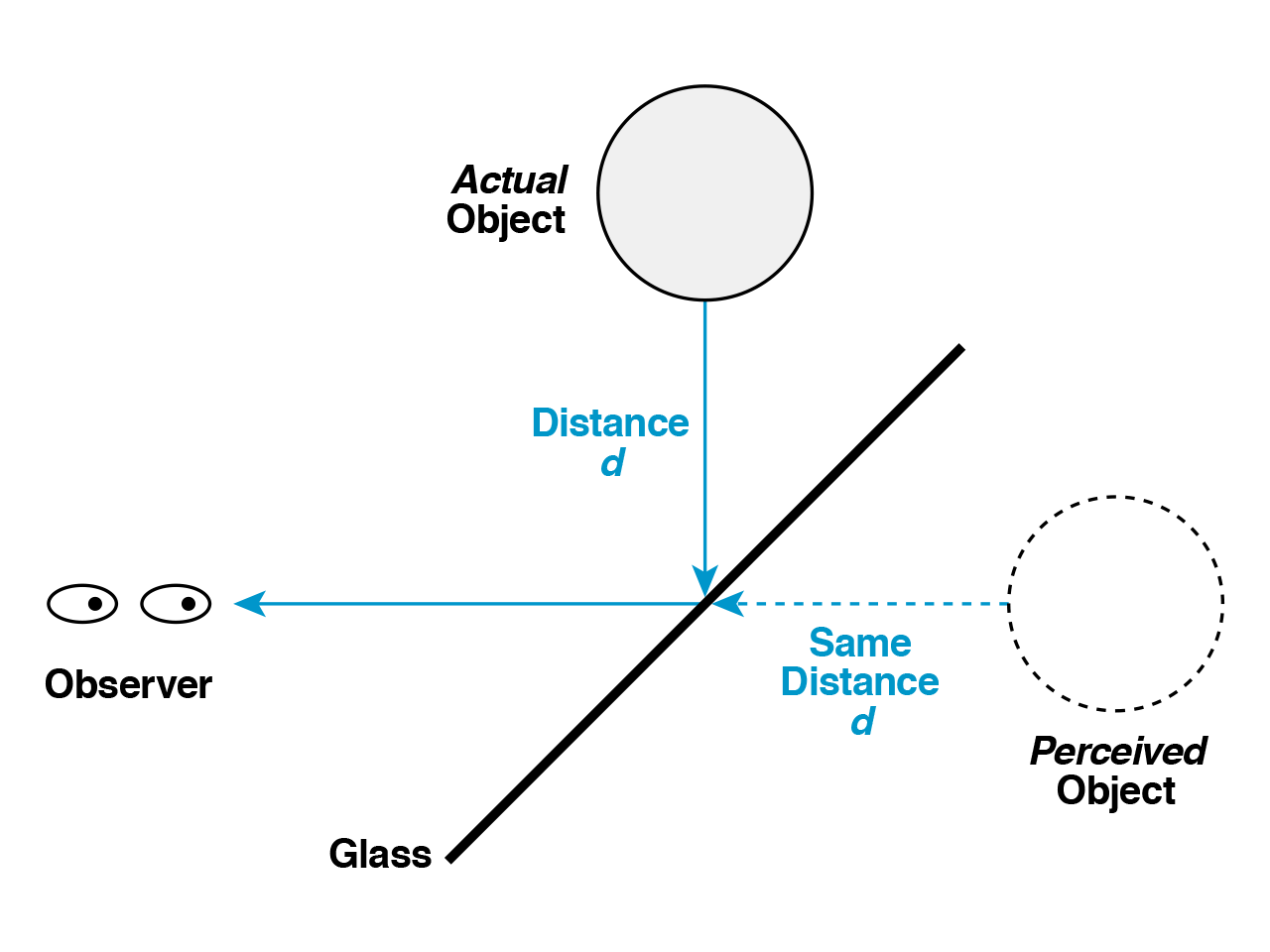 wearables_pepper-diagram.png