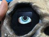 lcds___displays_goofy-eye.jpg