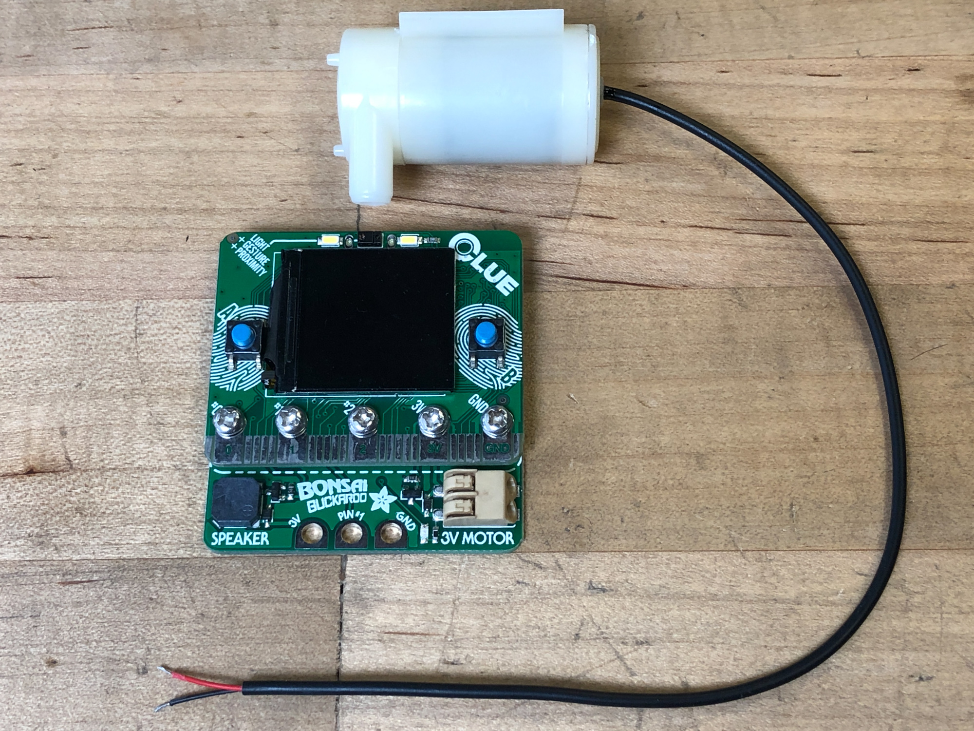 sensors_plant-1294.jpg