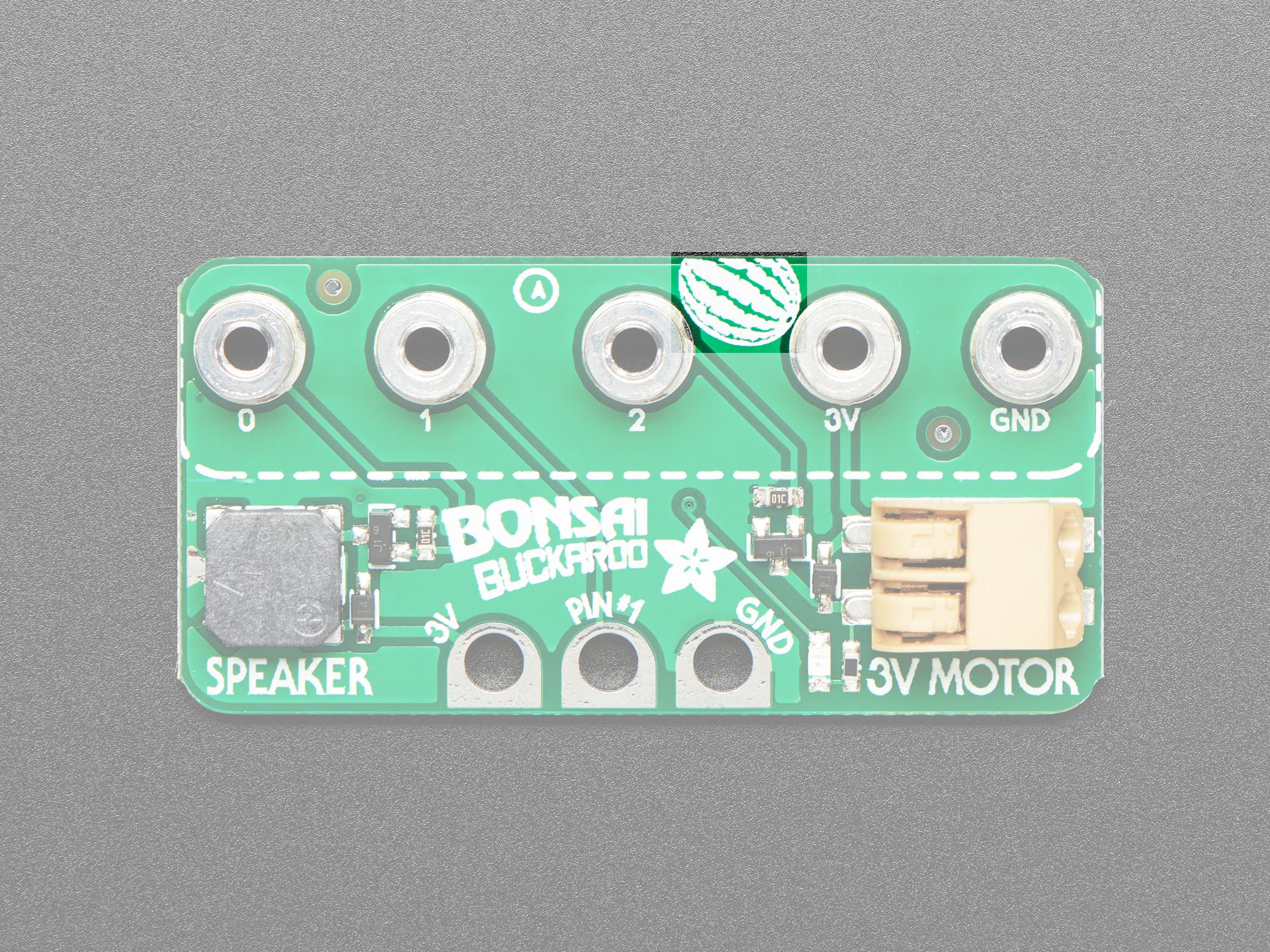 sensors_BB_pinouts_watermelon.jpg