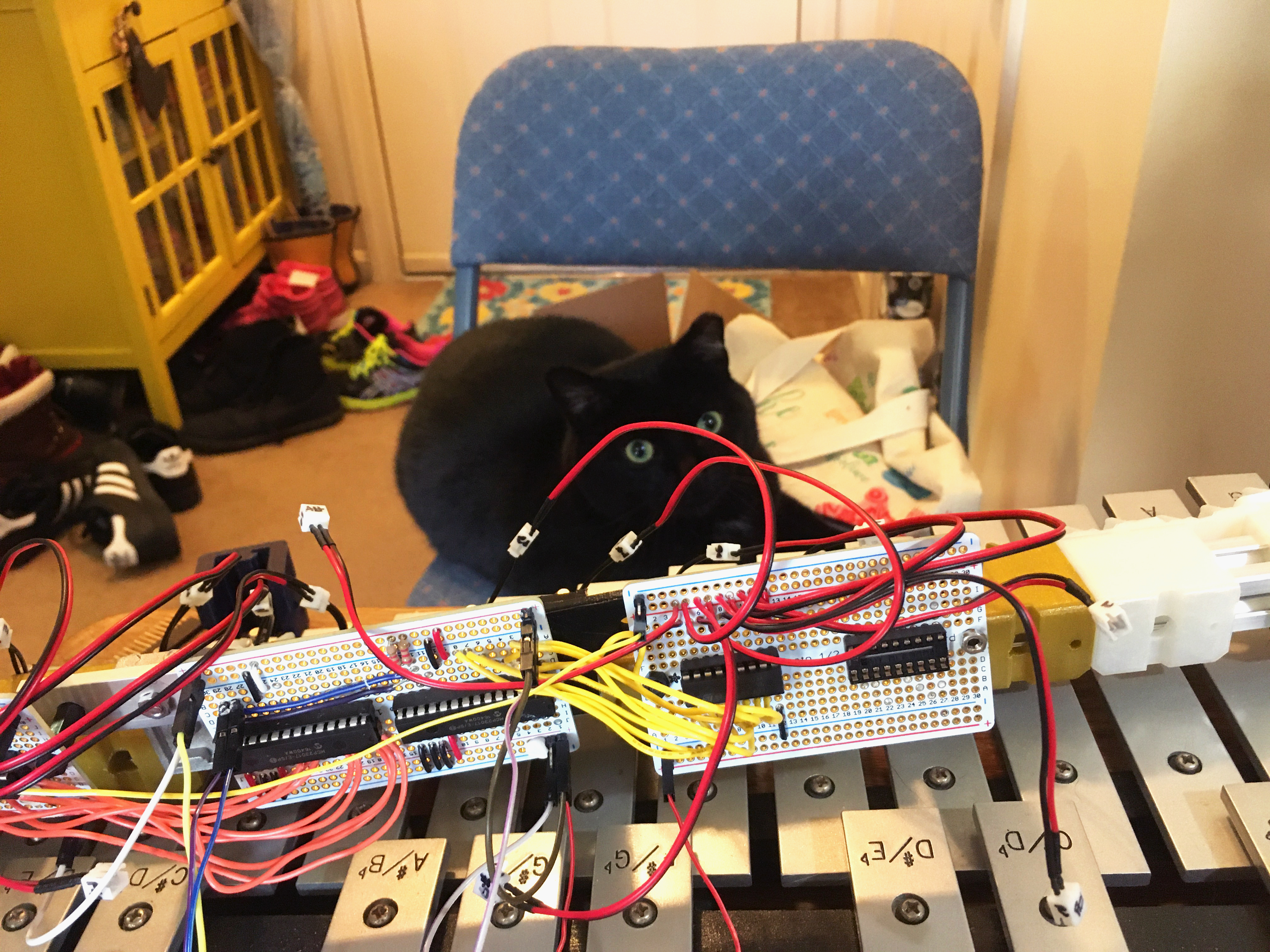circuitpython_IMG_9948_edited.jpg