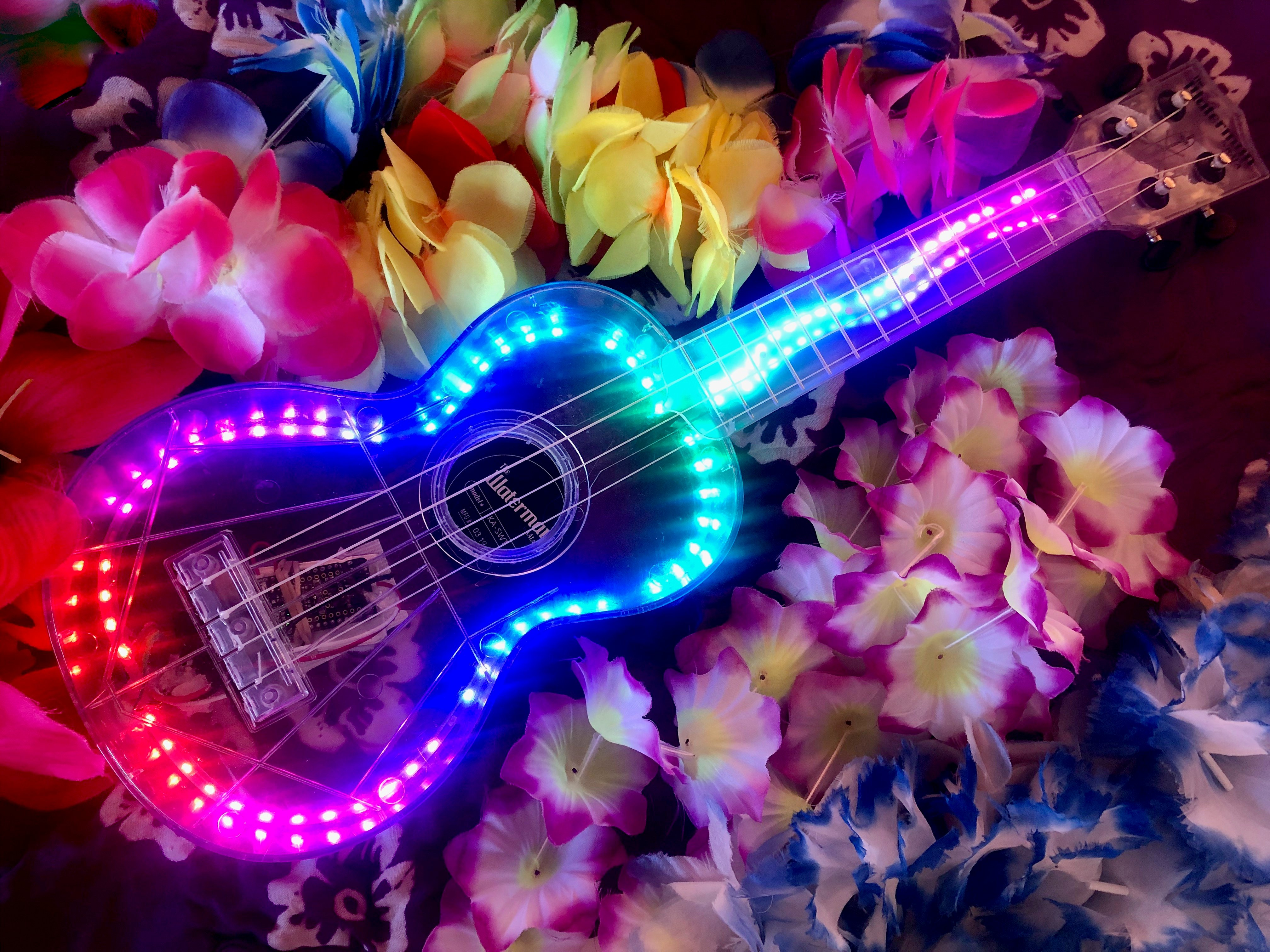 led_strips_led_ukulele_flowers.jpeg