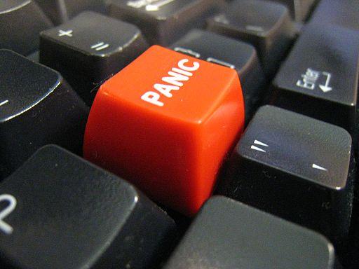 adafruit_products_PyRuler_Panic.jpg