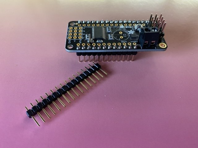 adafruit_products_male_header.jpg