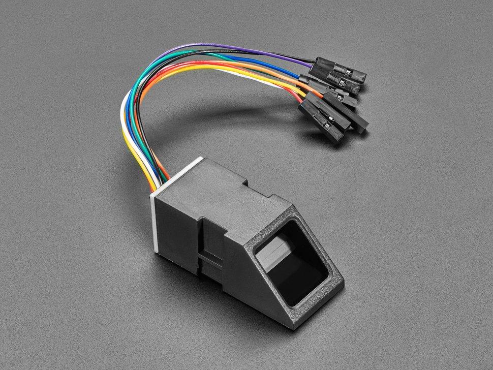 biometric_4690-02.jpg