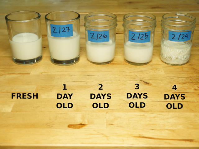 sensors_milk_samples.jpg